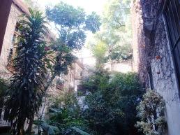 ...y llegando a un oasis inimaginable en el medio de la ciudad...